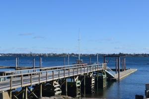 Dolphin Marina Dock